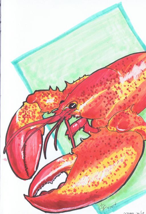 """""""P.E.I. Lobster"""" Sketchbook 001 - Pencil and ink October 30, 2014 ©2015 Rob Langille"""